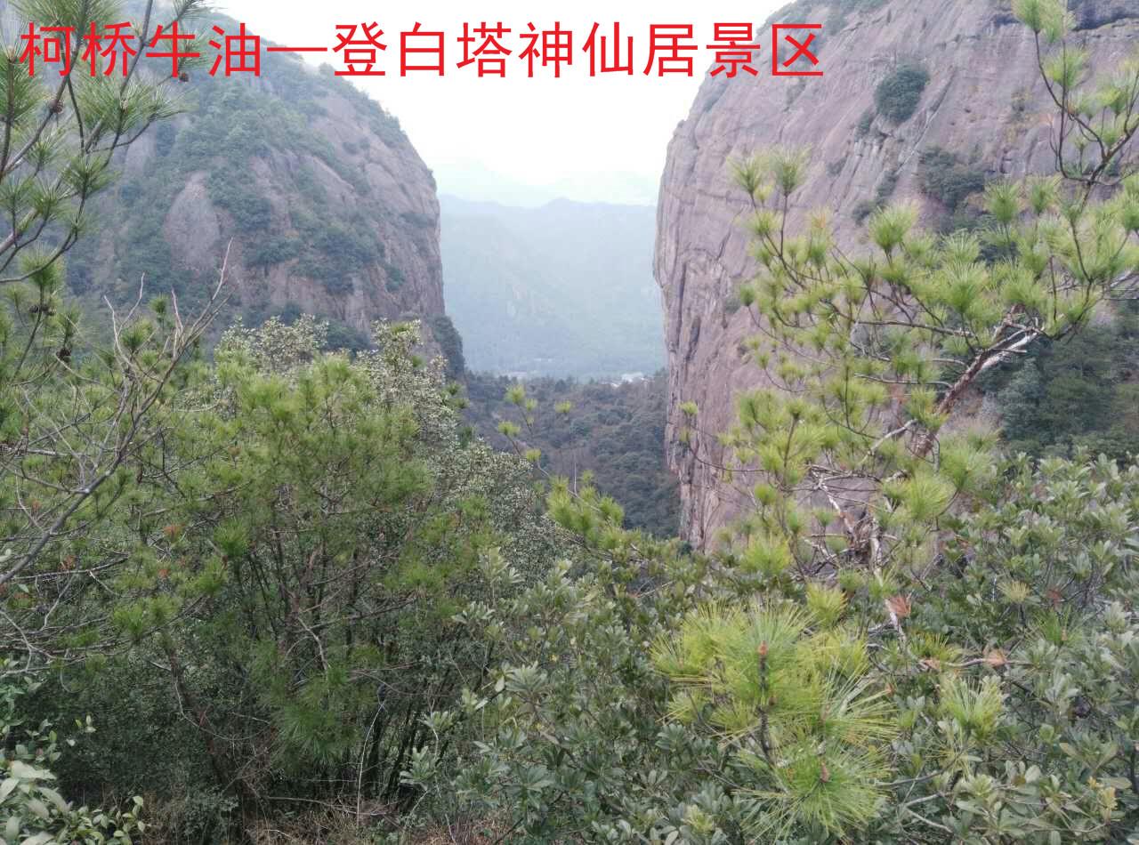 神仙居景区3.jpg