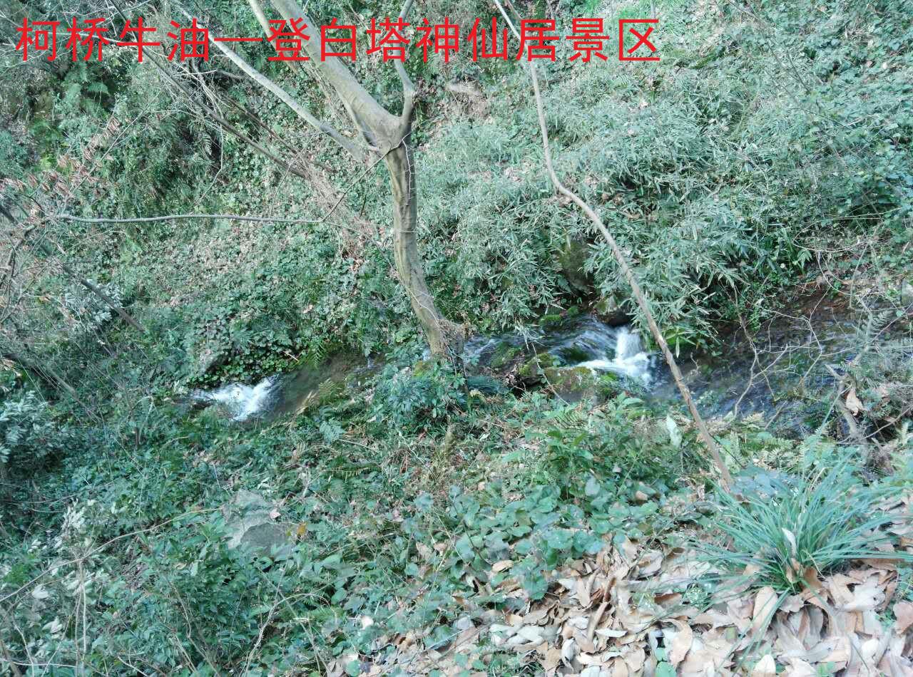 神仙居景区9.jpg