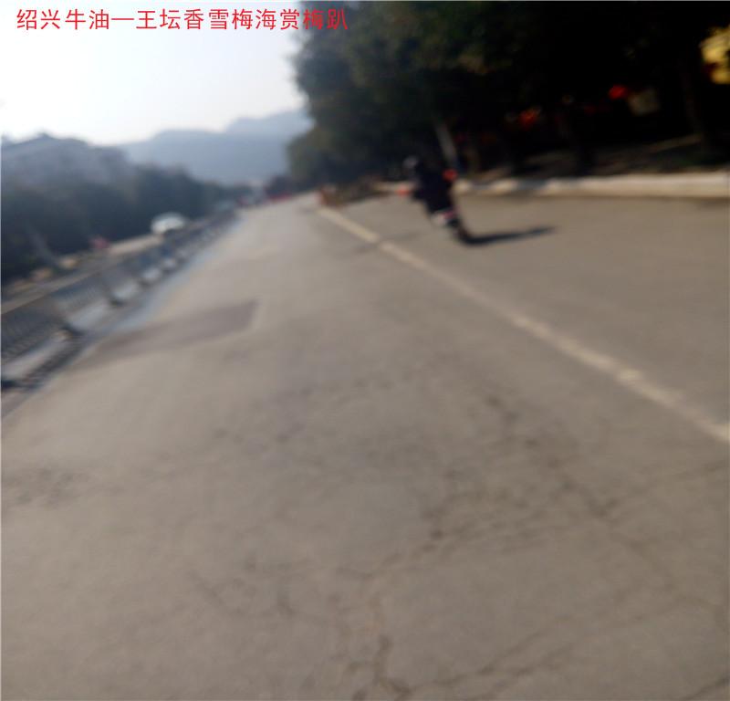 曹江路3.jpg