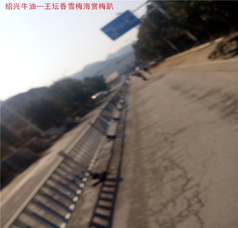 曹江路8.jpg