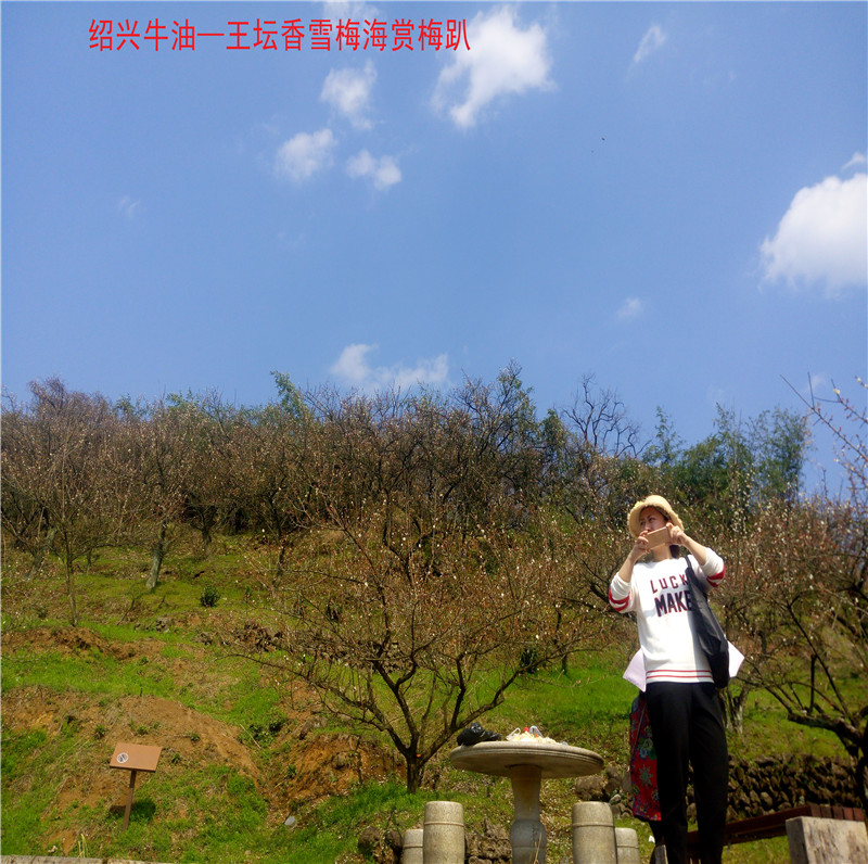 香雪梅海景区9.jpg
