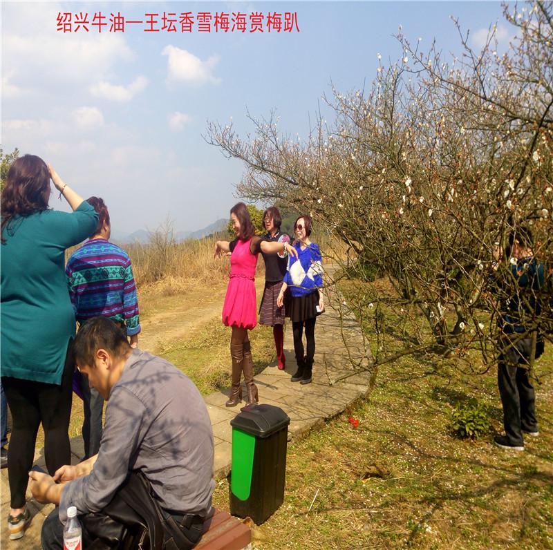 香雪梅海景区33.jpg