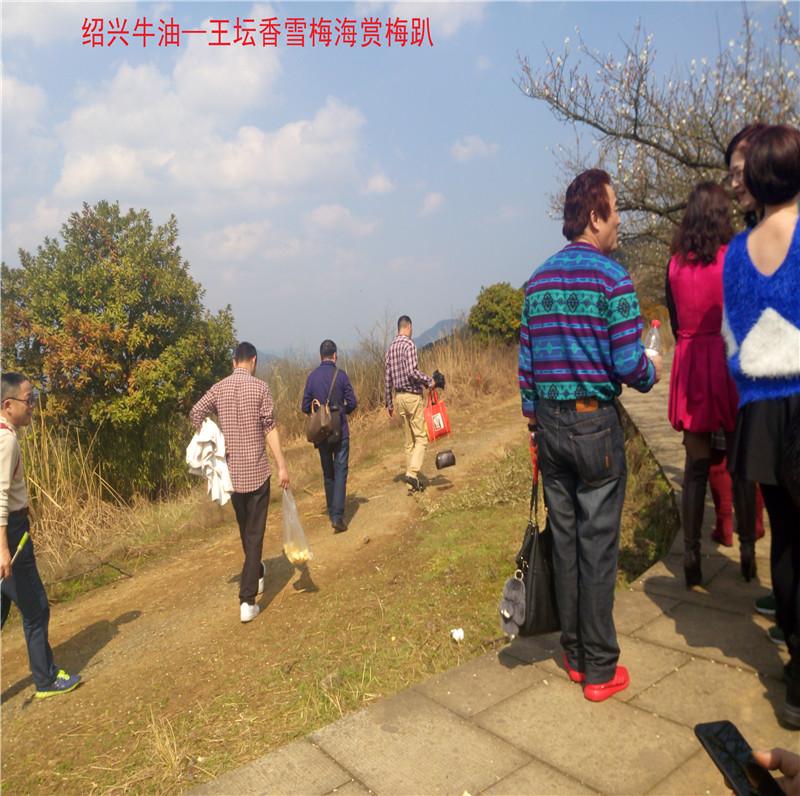 香雪梅海景区35.jpg