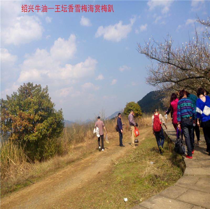 香雪梅海景区36.jpg