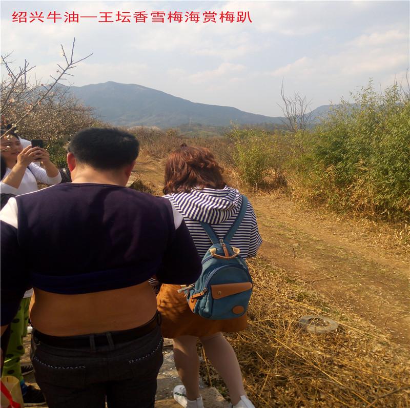 香雪梅海景区46.jpg
