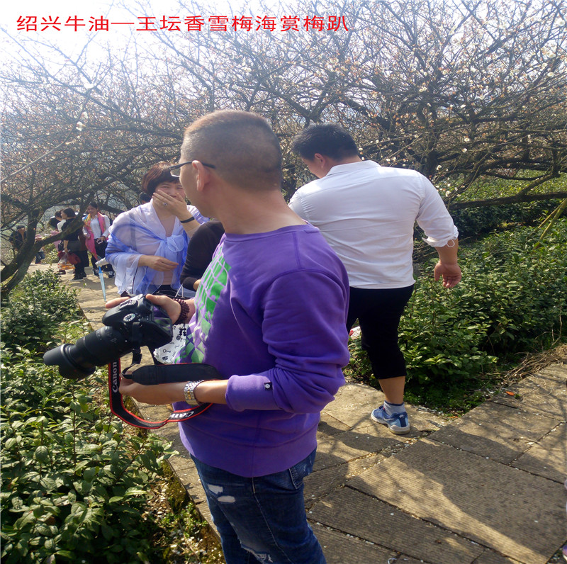 香雪梅海景区47.jpg