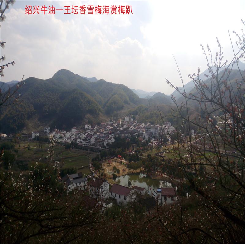 香雪梅海景区54.jpg
