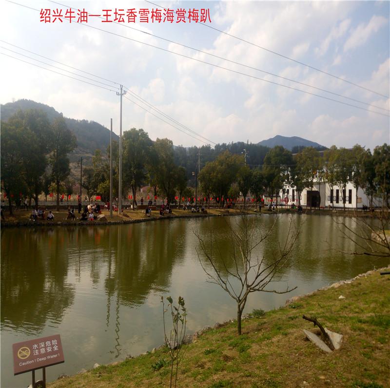 香雪梅海景区58.jpg