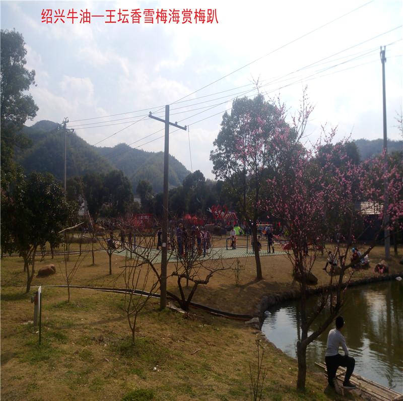 香雪梅海景区60.jpg