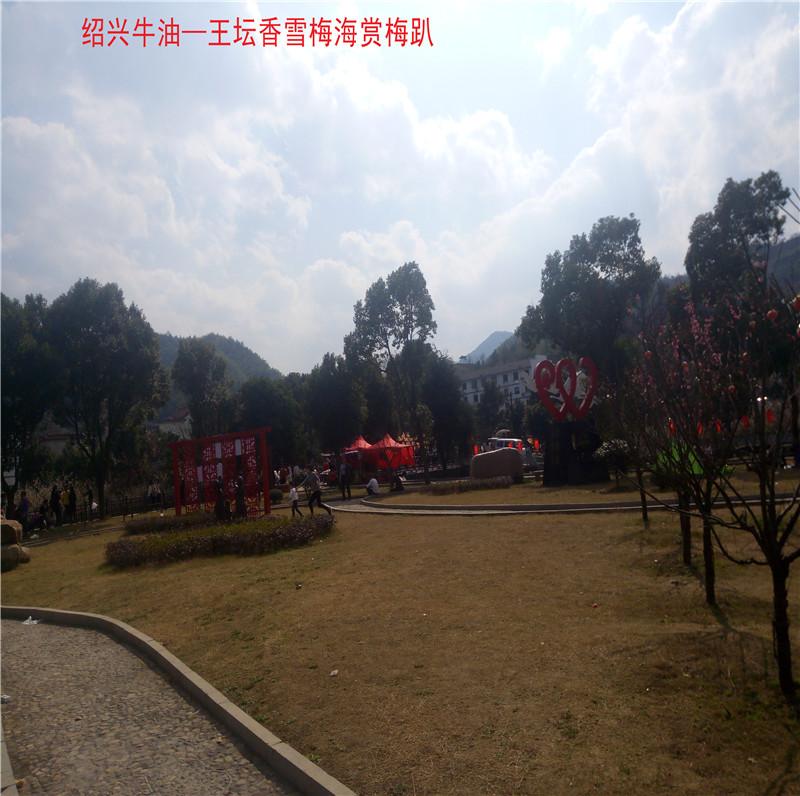 香雪梅海景区71.jpg