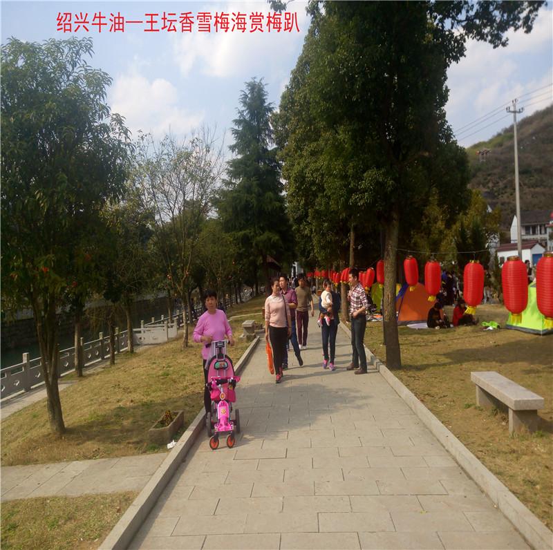 香雪梅海景区73.jpg