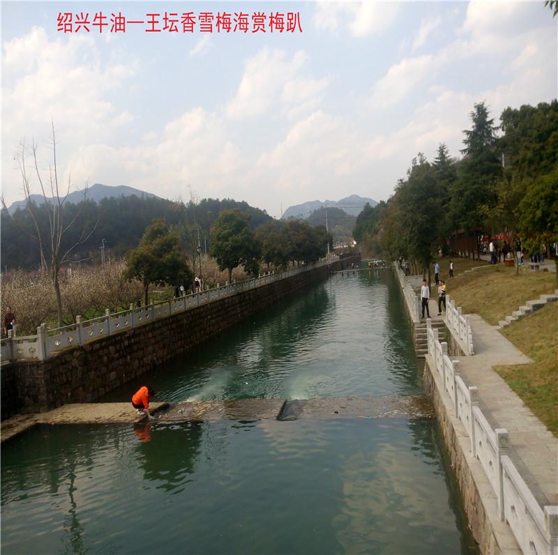 香雪梅海景区82.jpg