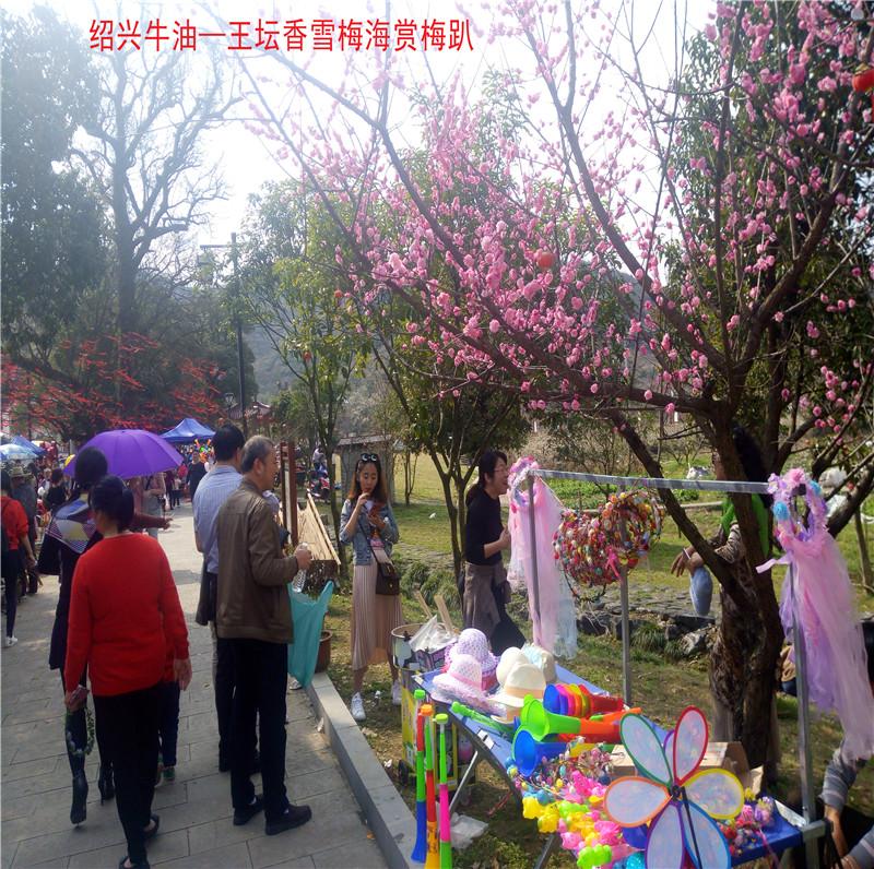 香雪梅海景区90.jpg
