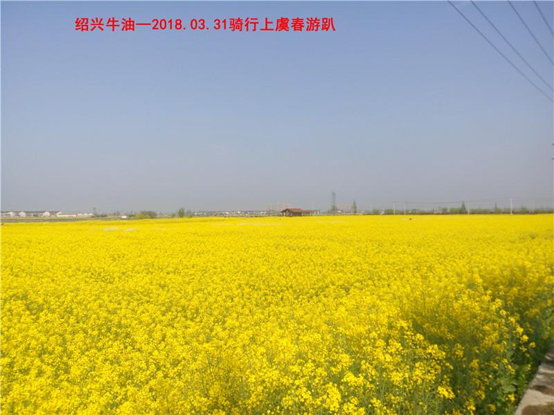 上虞春游游记91.jpg