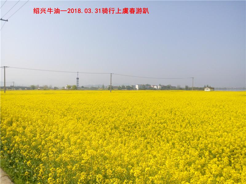 上虞春游游记92.jpg