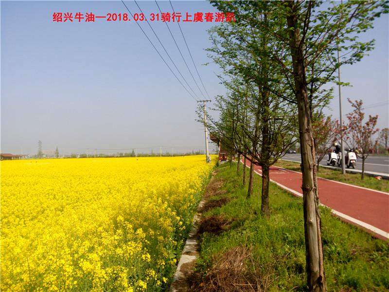 上虞春游游记93.jpg