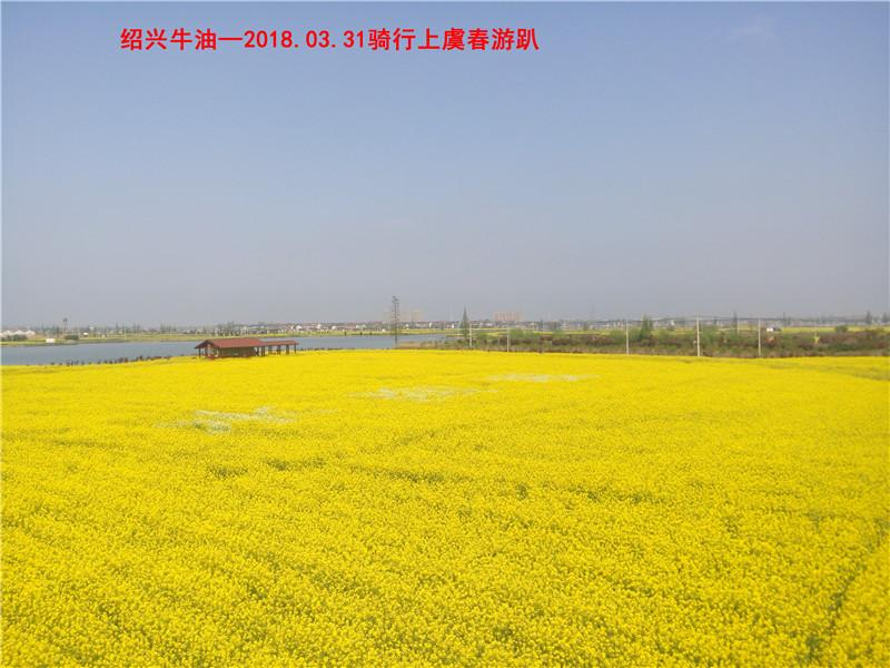 上虞春游游记114.jpg