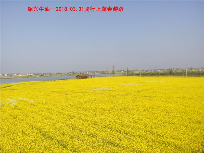 上虞春游游记117.jpg