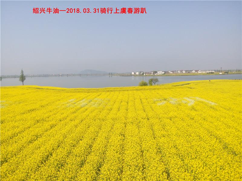 上虞春游游记119.jpg