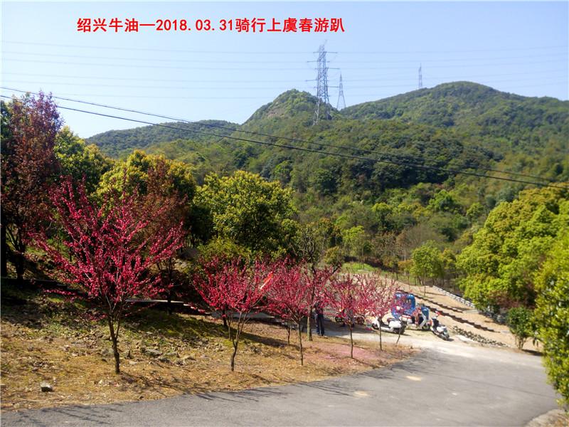 上虞春游游记220.jpg