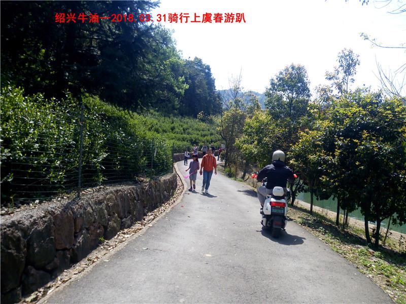 上虞春游游记263.jpg