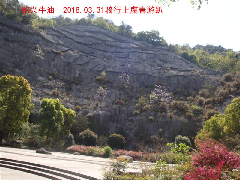 上虞春游游记410.jpg