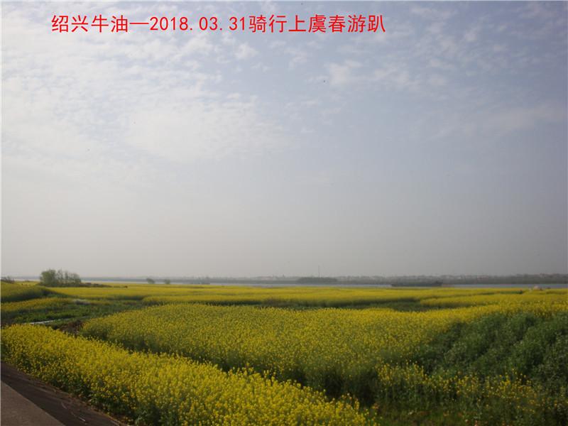 上虞春游游记526.jpg