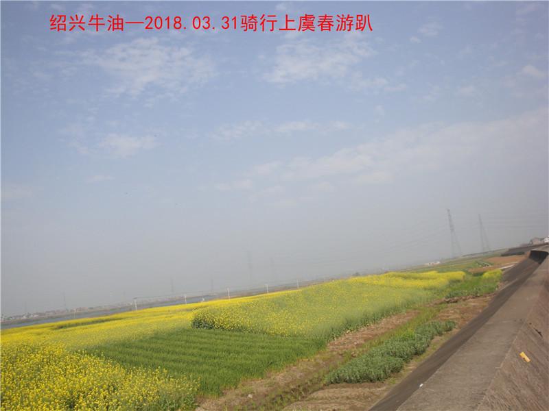 上虞春游游记527.jpg