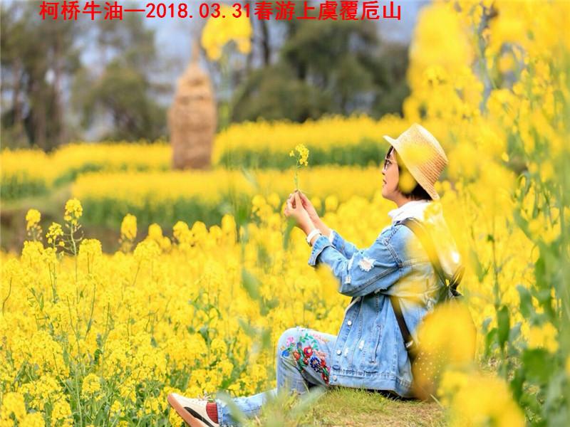 春游覆卮山01.jpg