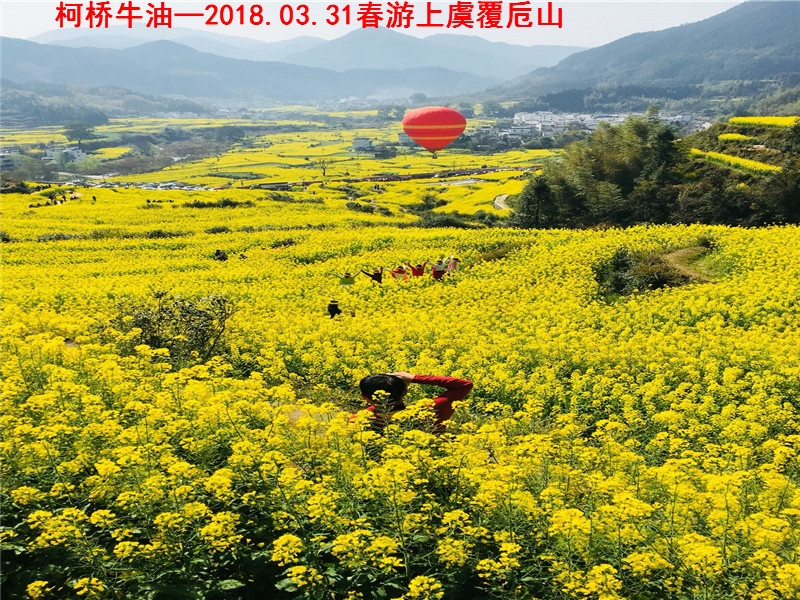 春游覆卮山04.jpg