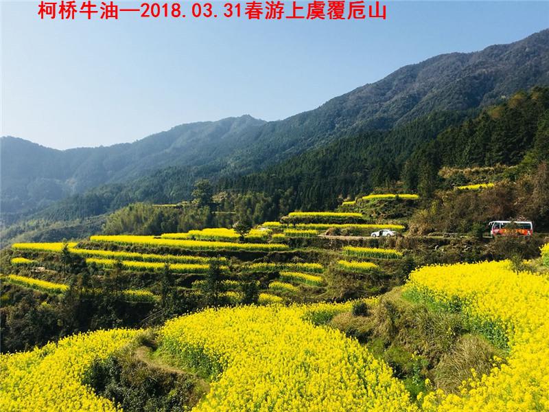 春游覆卮山08.jpg